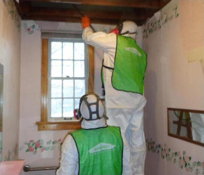 Mold Remediation Mold Problem?