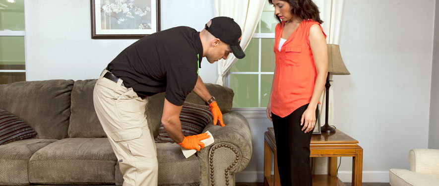 Clarksburg, MD carpet upholstery cleaning