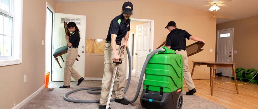 Clarksburg, MD cleaning services